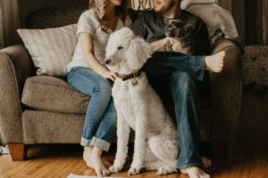 cozy couple sitting on couch with dog