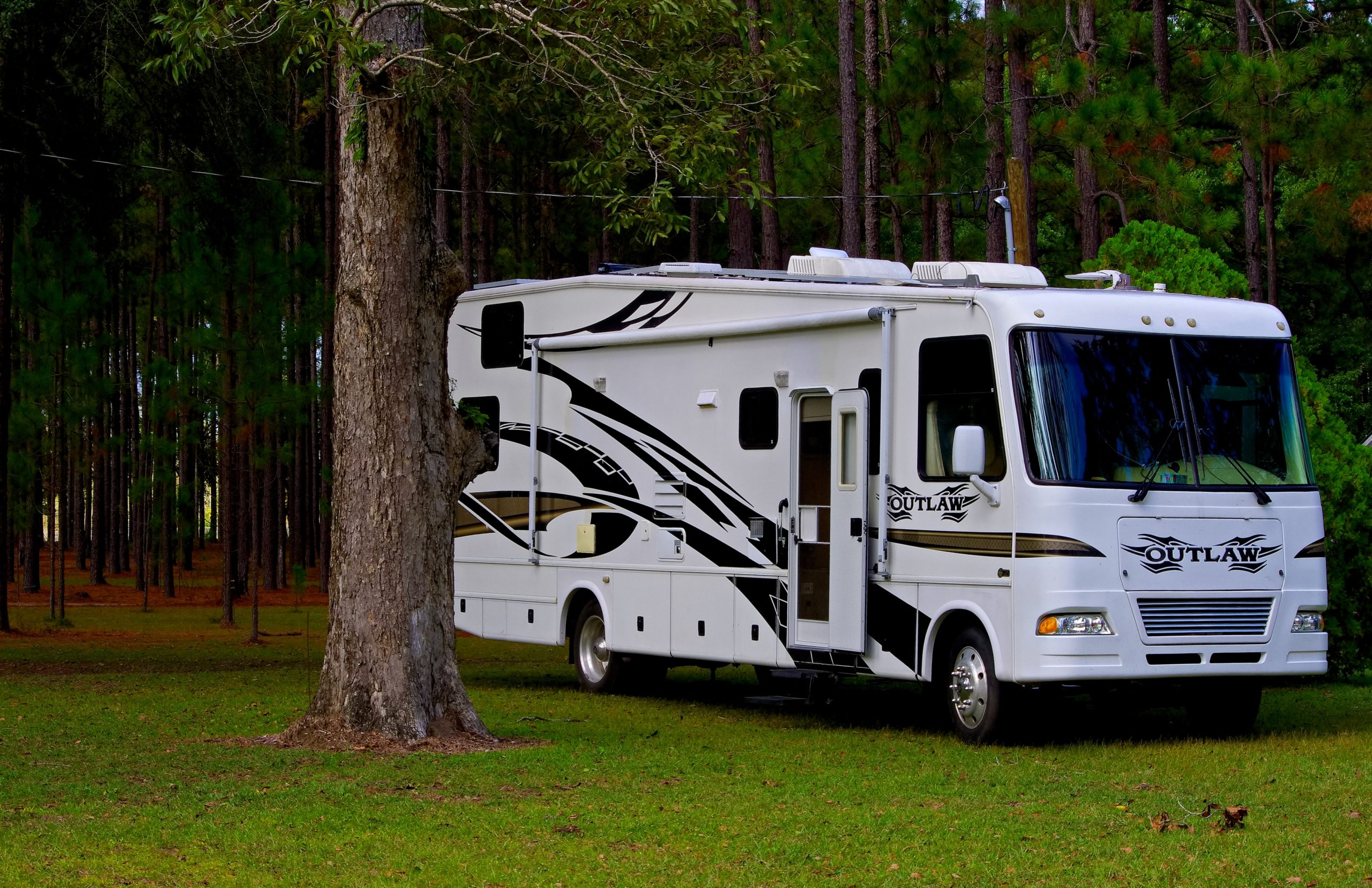 RV parked in the forest